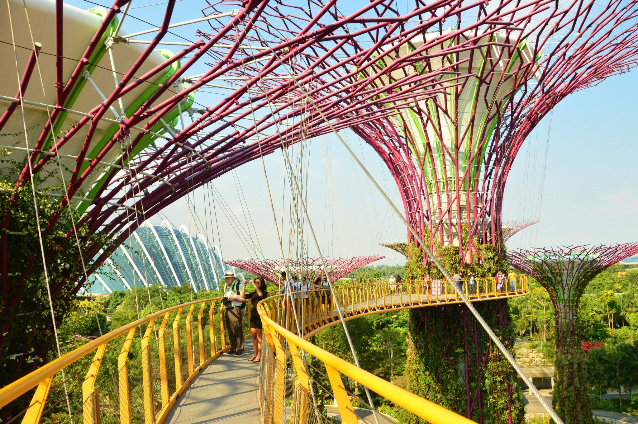 The OCBC Walkway at singapore gardens by the bay