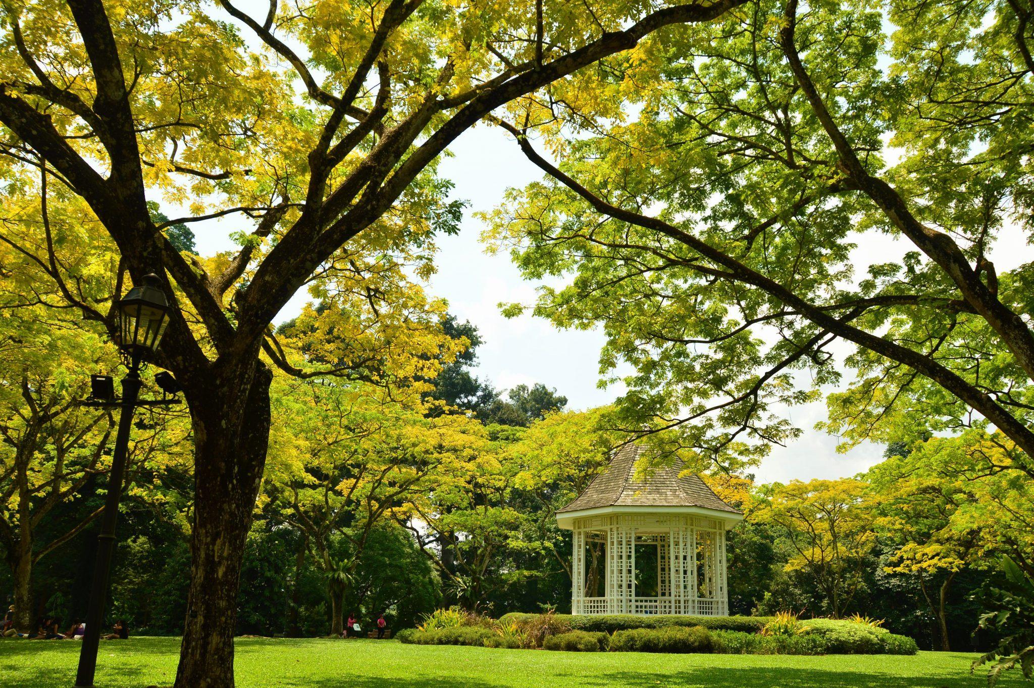 A gazebo in the Botanic Gardens of Singapore