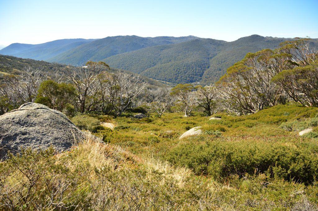 Sydney-weekender Bowral-Australia mount-Kosciuszko