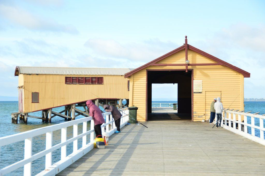 things to do in queenscliff