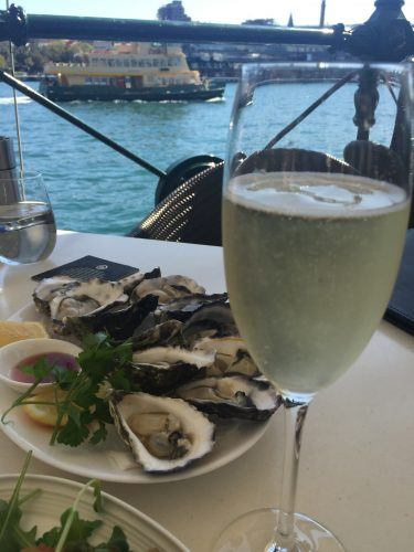 flute of champagne and plate of oysters with water and ferry behind sydney