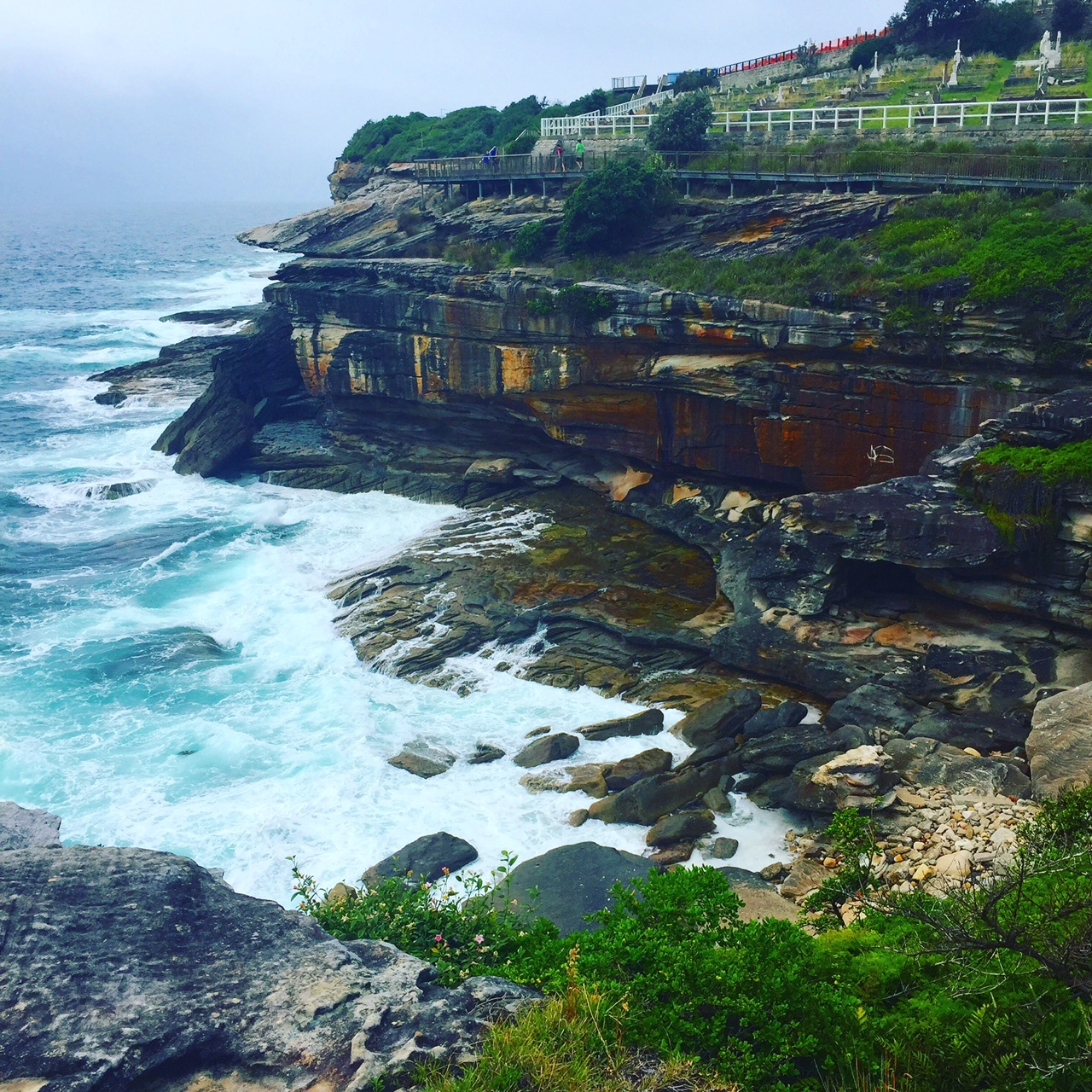 cliff and coastline on the bondi to coogee walk sydney must do top 10