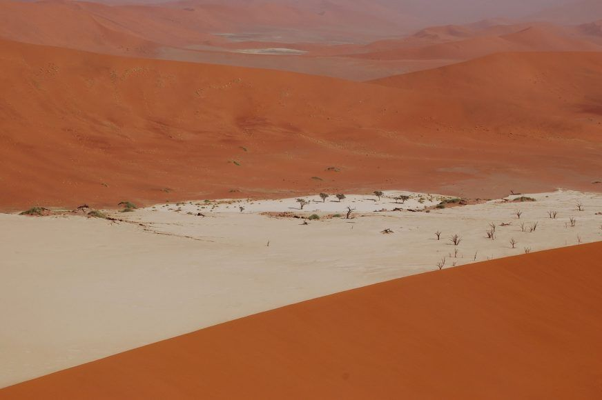 View of Dead Vlei from the top of Big Daddy Dune