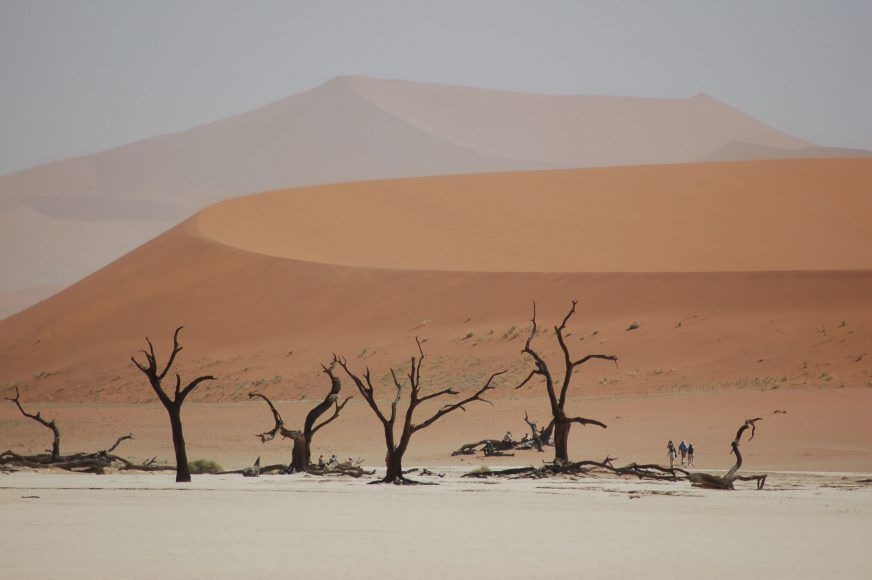 The other worldy Dead Vlei