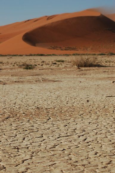 The parched floor of Sossusvlei