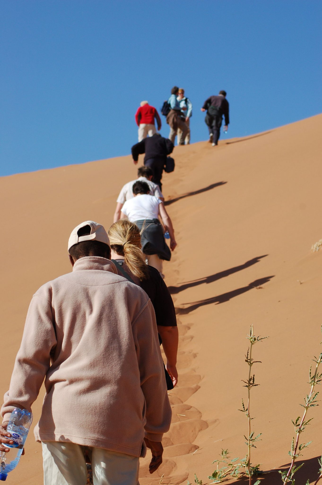Solo Travel Groups: Best Organised Tours for Single Travel