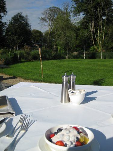 white tablecloth with fruit and yogurt outside with a view of grass and trees