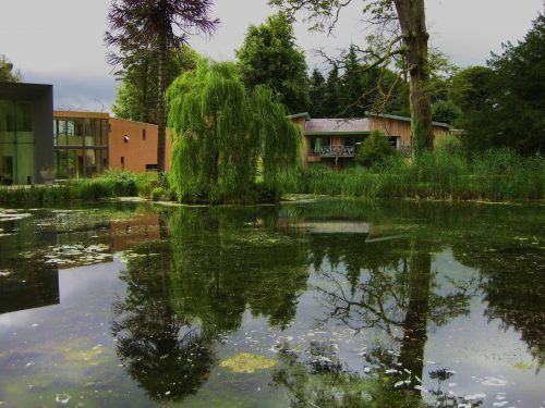 Building and tree with lake in front reflecting them monart spa ireland
