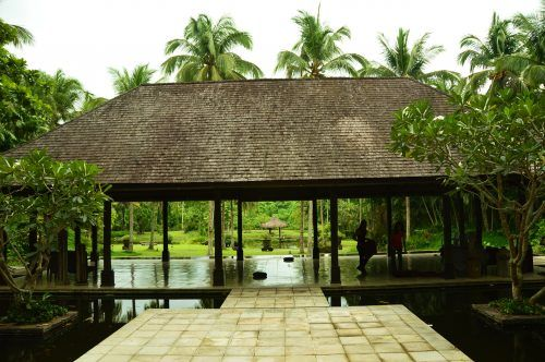 open air pavillion for yoga surrounded by palm trees