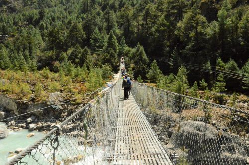 suspension bridge with trees in background everest base camp trek nepal