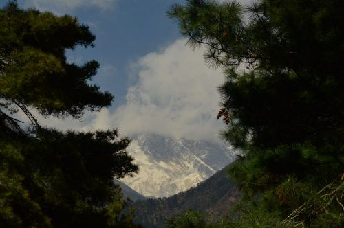 view of mount everest with clouds and trees everest base camp trek nepal