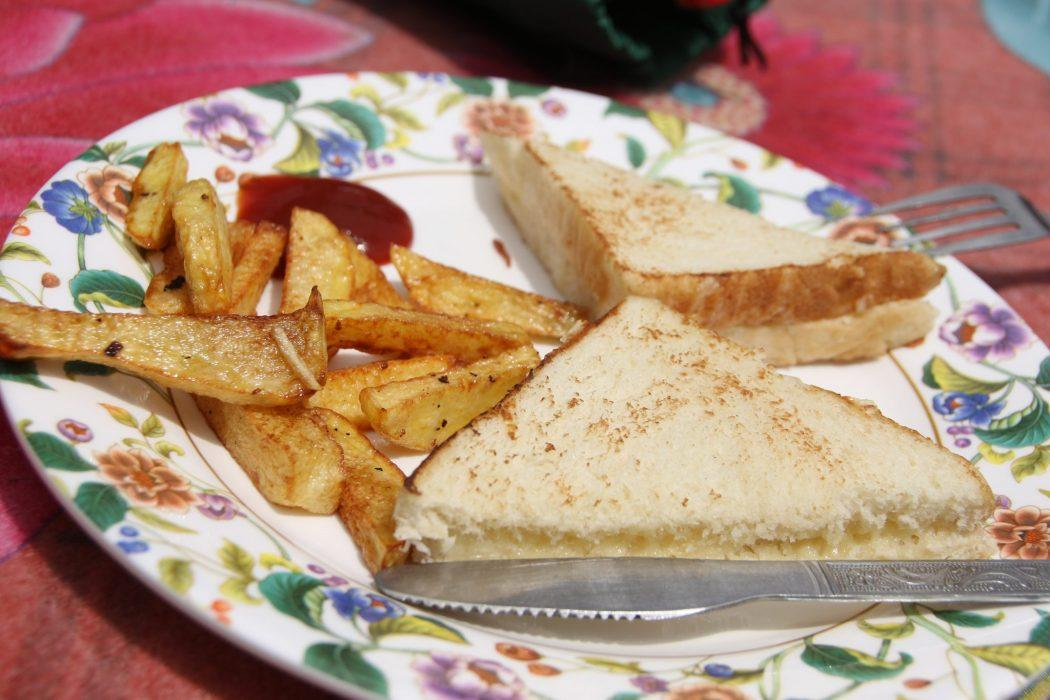 cheese sandwich with hot chips and tomato sauce on a plate