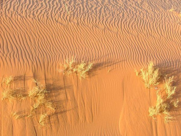 The light in the desert constantly changes the colour of the sand