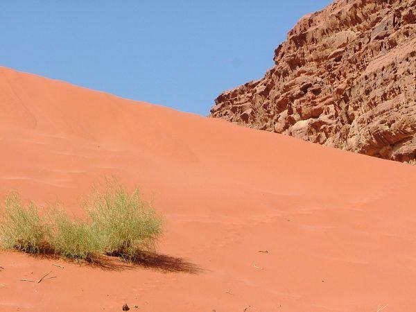 Love those sand dunes