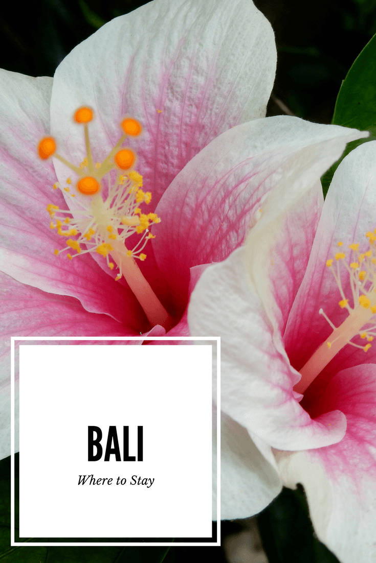 First time visiting Bali? Here is my guide to Bali Where to stay. The 5 key areas with options for villas, food and spas! #baliwheretostay #baliwheretogo #balivillas