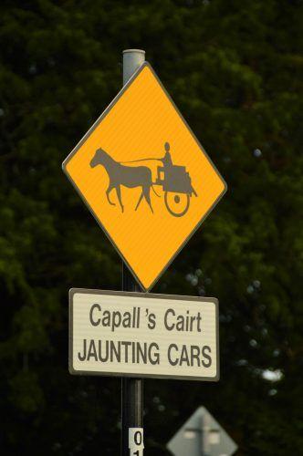 jaunting cart sign in killarney ireland