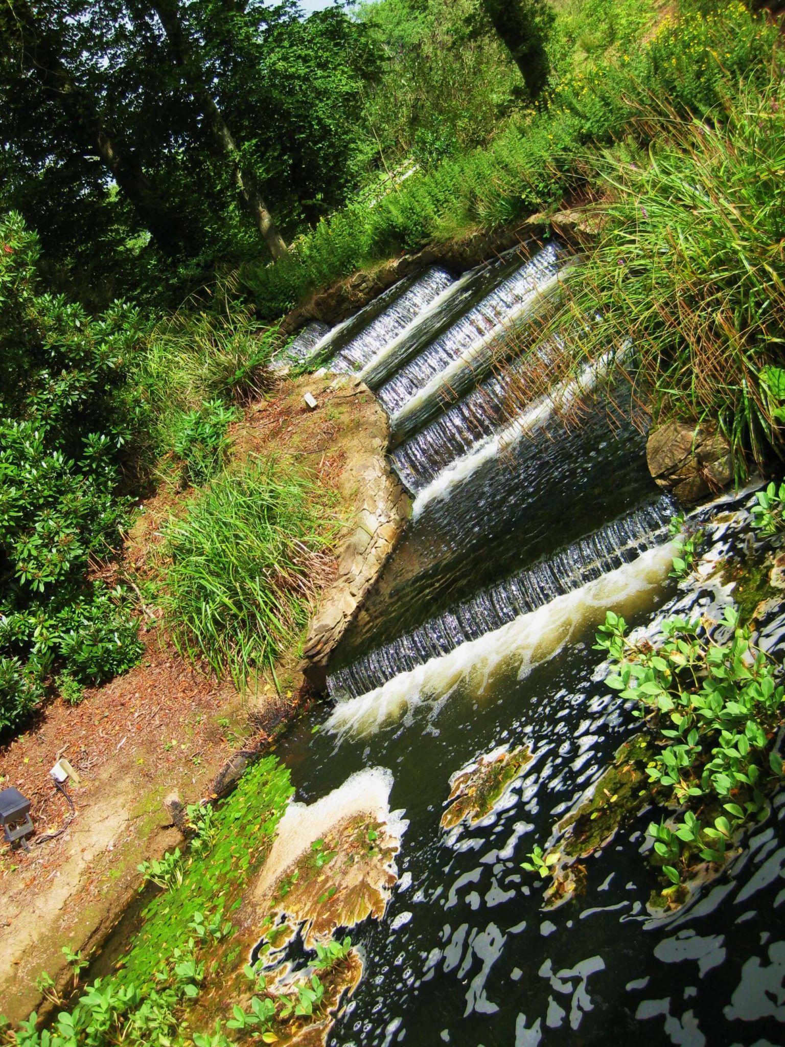 lake and waterfall surrounded by greenery monart spa ireland