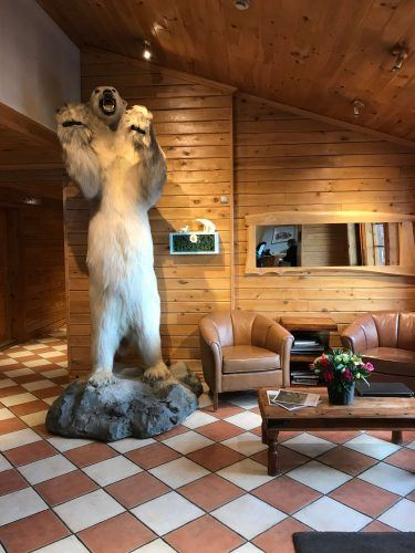 stuffed polar beat in the lobby at hotel ranga iceland