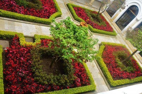 red and green garden at museo botero bogota