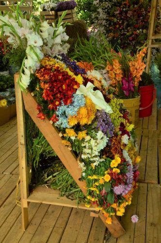 wooden silleteros decked out with flowers
