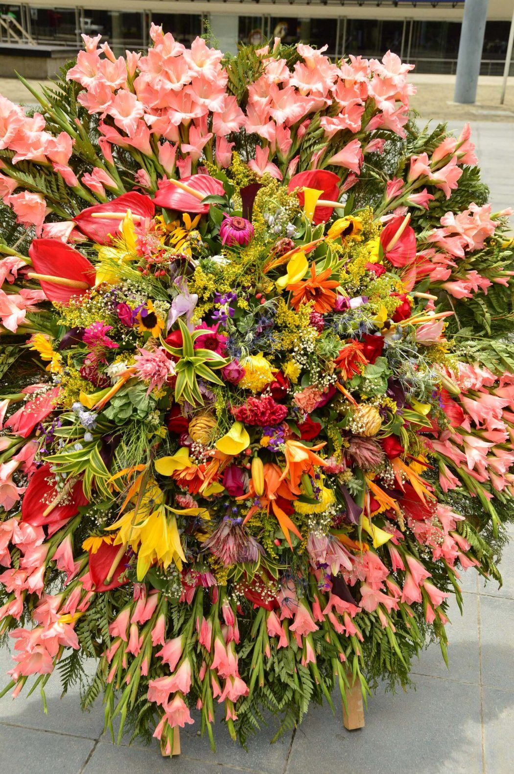 floral display at plaza mayor