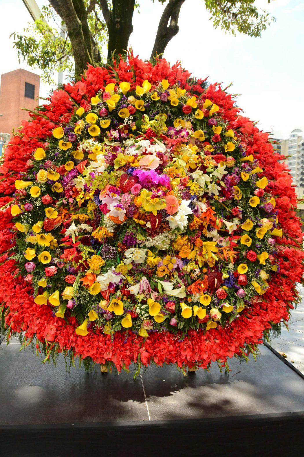 feria de las flores medellin winner