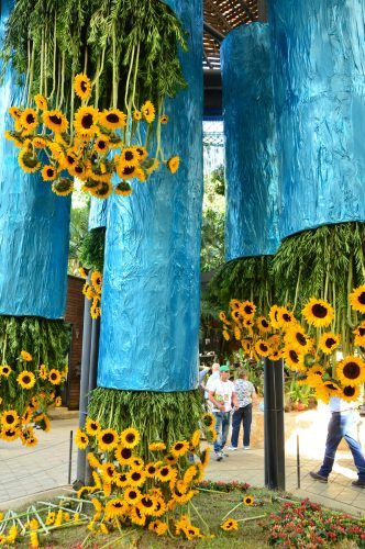 medellin flower festival display