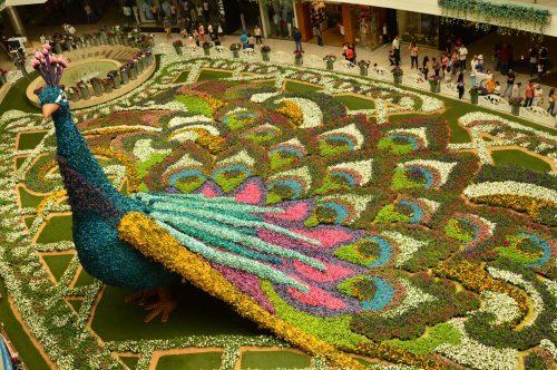 feria de las flores medellin at santa fe mall
