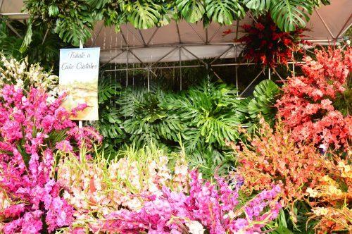 floral display Feria de las flores medellin