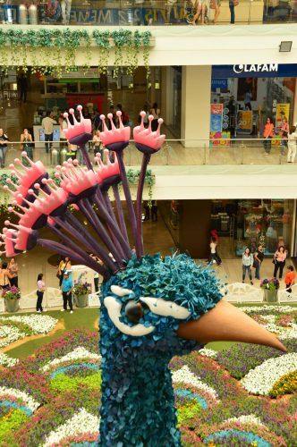 floral peacock at santa fe mall