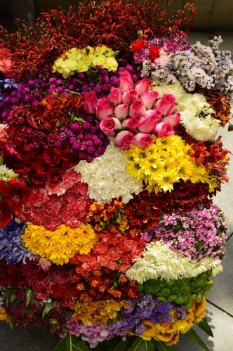 festival de las flores display