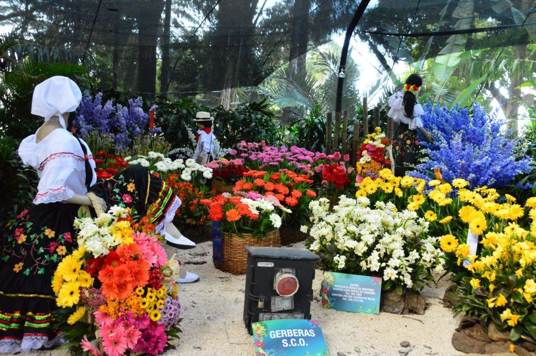 Feria de Las Flores Medellin - The Most Instagrammable Week of the Year
