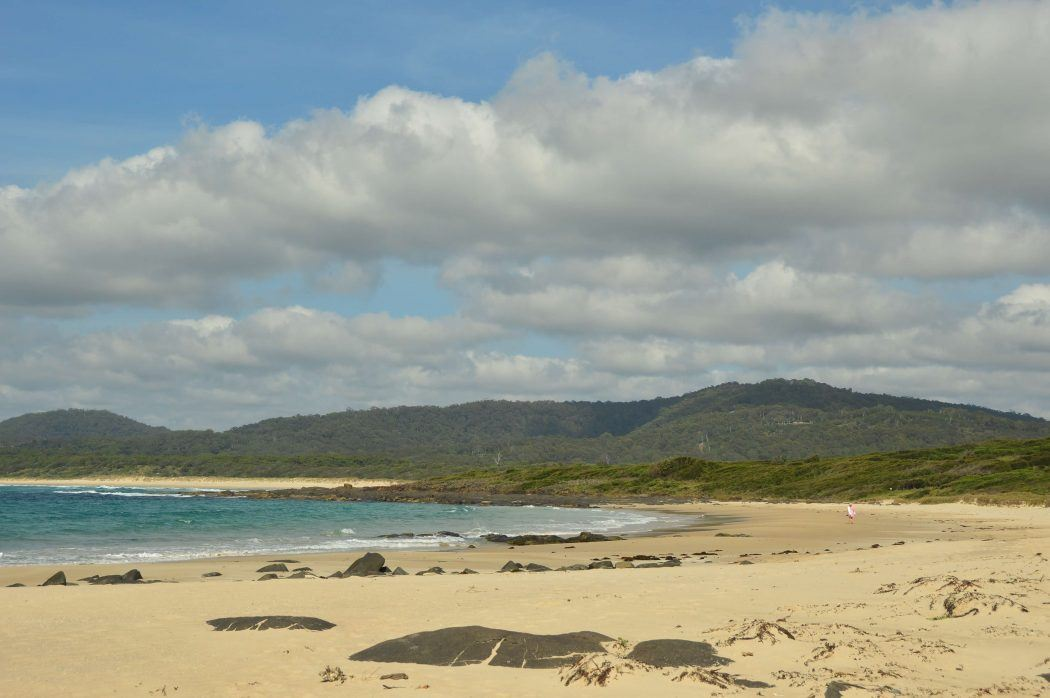 australian sea front coastline with beach