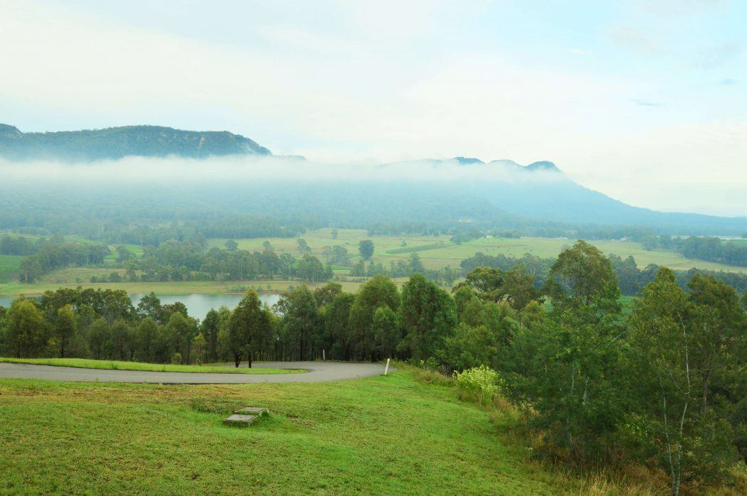 overview of trees and parkland with mist in the hunter valley new south wales australia