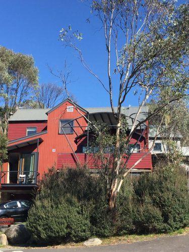 mount kosciuszko accommodation
