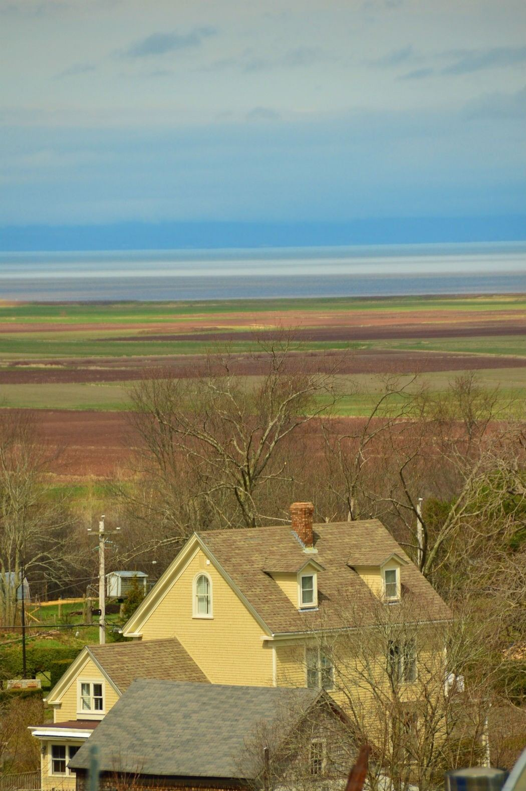 House and landscape of wolfville