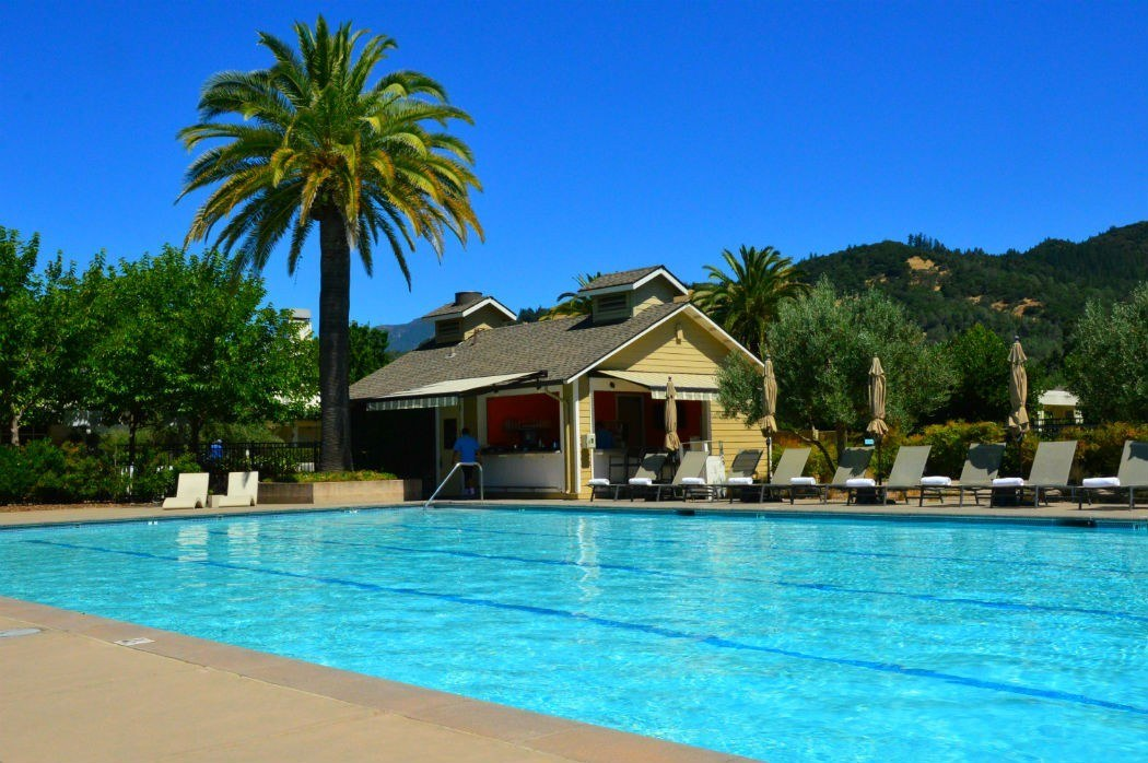 lap pool at solage with pool house and palm tree