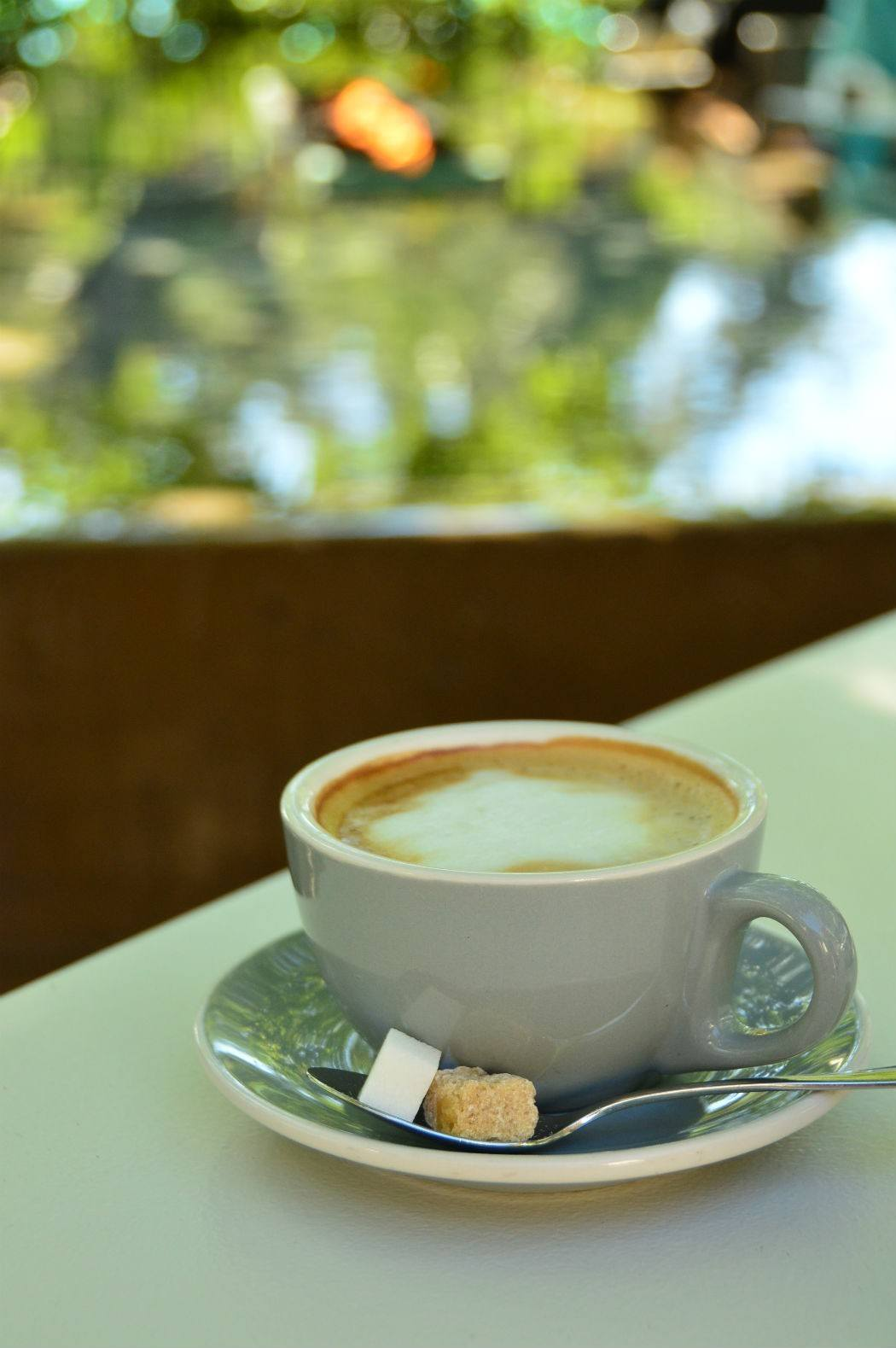 Cup of white coffee in a saucer with pool in background