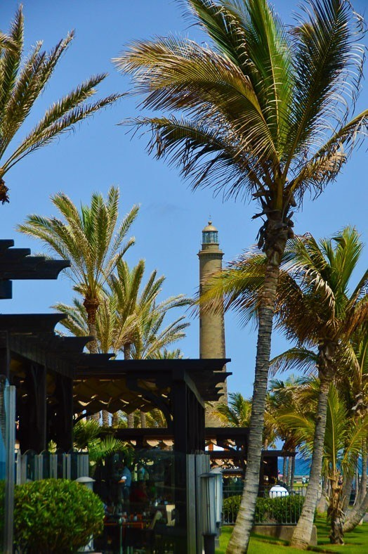 palm trees and the lighthouse of Maspalomas
