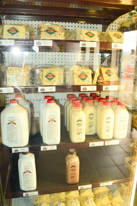 milk and cheese in fridge at fox hill