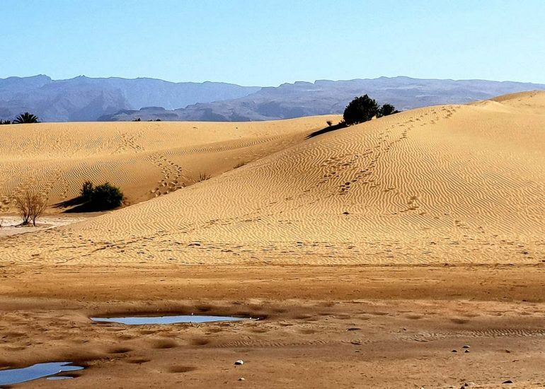 things-to-do-in-maspalomas