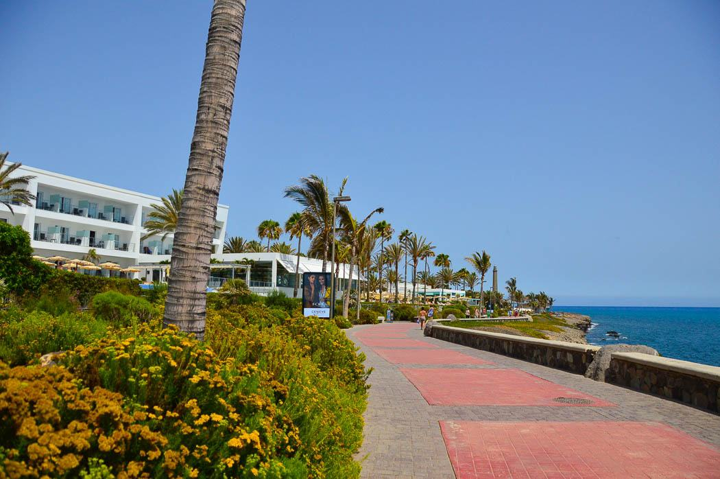 palm trees, the sea and a hotel as seen from the Melonaras waterfront