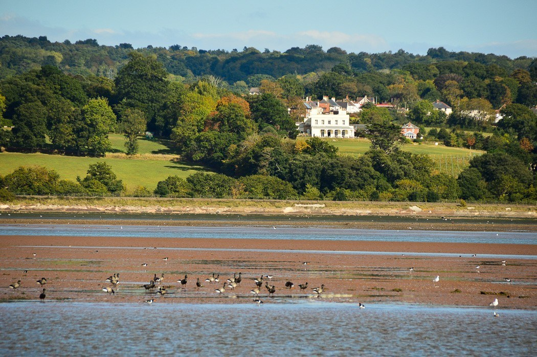 lymptsone manor as seen from a river exe boat trip