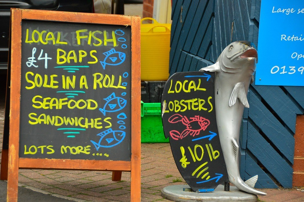 blackboard and other signs for local fish in Exmouth