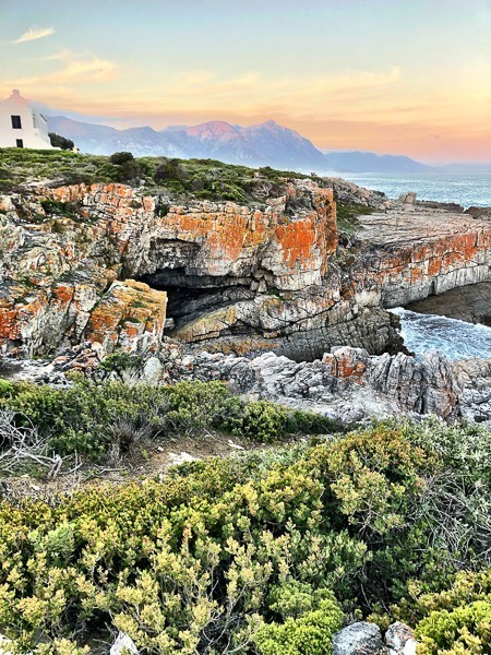 More Hermanus Cliff Path