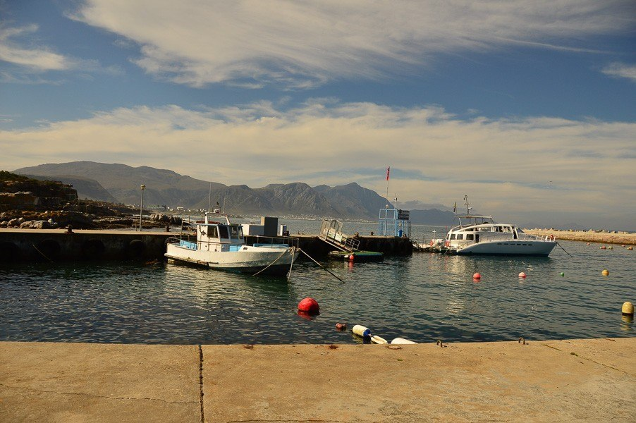Hermanus port with whale watching and local boats