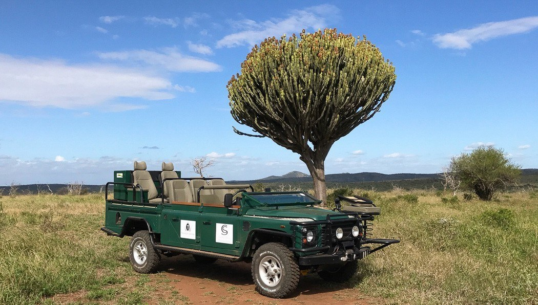 thanda green mamba vehicle next to a tree