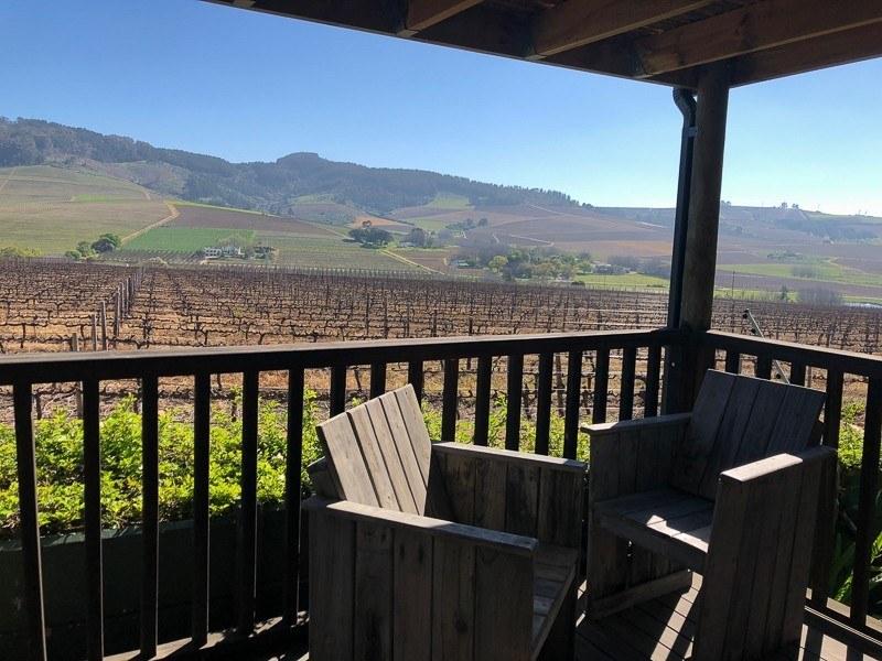 wedgeview stellenbosch vineyards