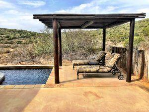 safari-honeymoon