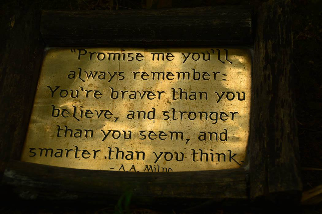 winnie the pooh quote engraved on a brass plate